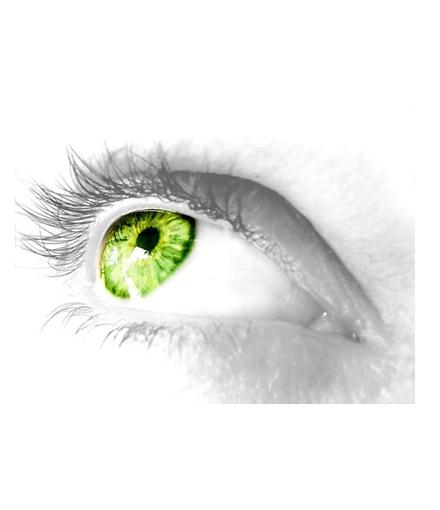 fabtronics-vision